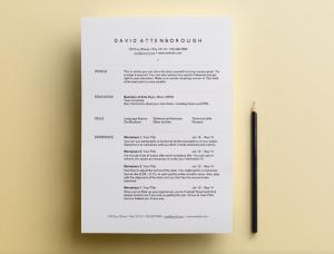 Átlátható, egyszerű, elegáns: megéri időt fordítanod a CV-dre!