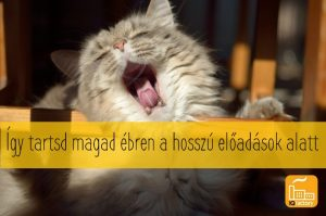 cat-tired-nap-yawn-tongue-cute